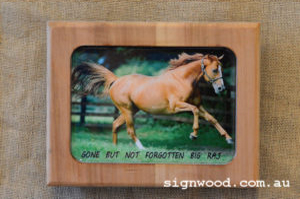 pet memorial wooden frame