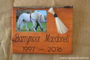 Barrymoor Macdonel wooden pet frame