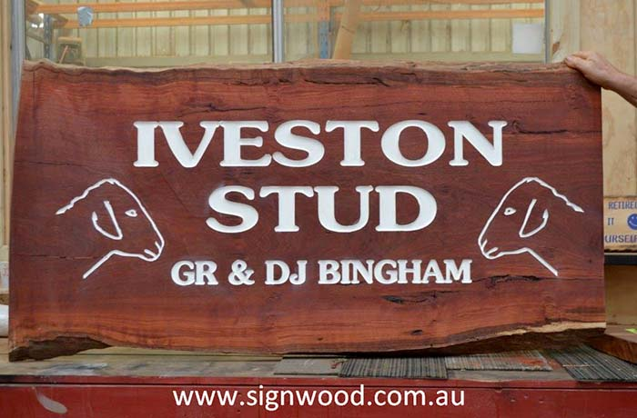iveston-stud