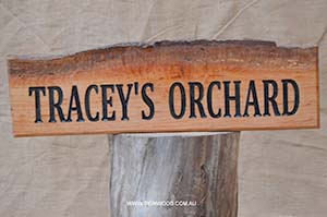 tracy-orchard